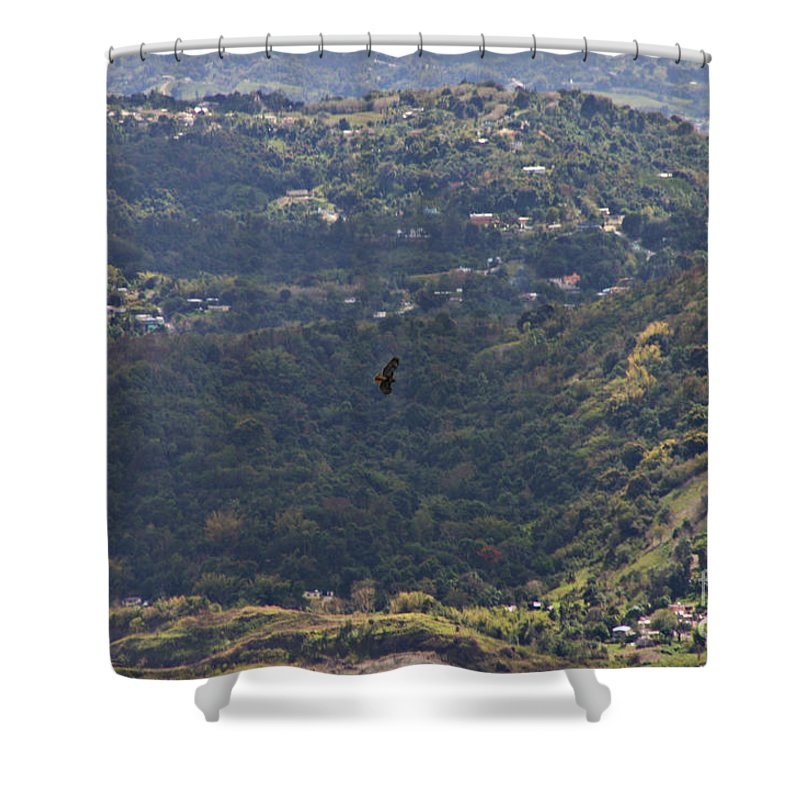 Bird Shower Curtain featuring the photograph Guaraguao by Gilbert Marcano