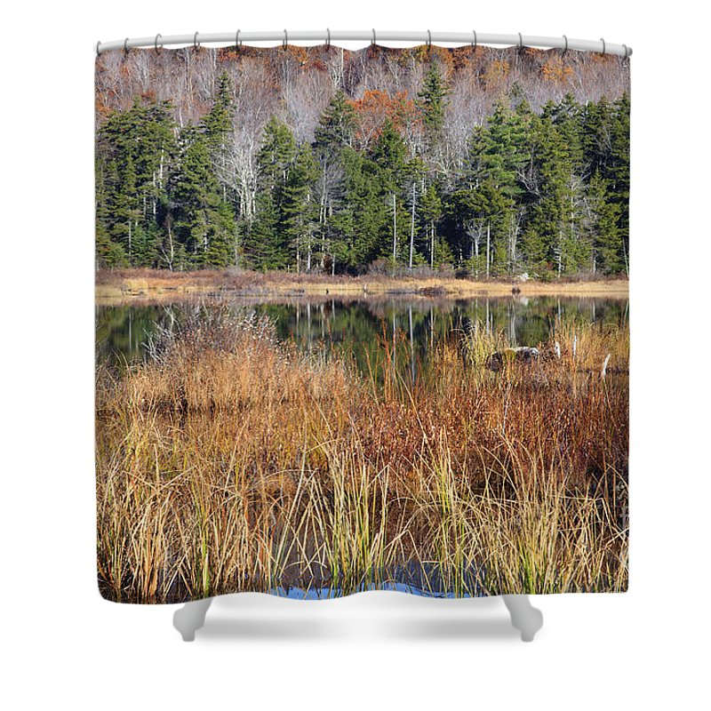Pond Shower Curtain featuring the photograph Guinea Pond - Sandwich New Hampshire Usa by Erin Paul Donovan