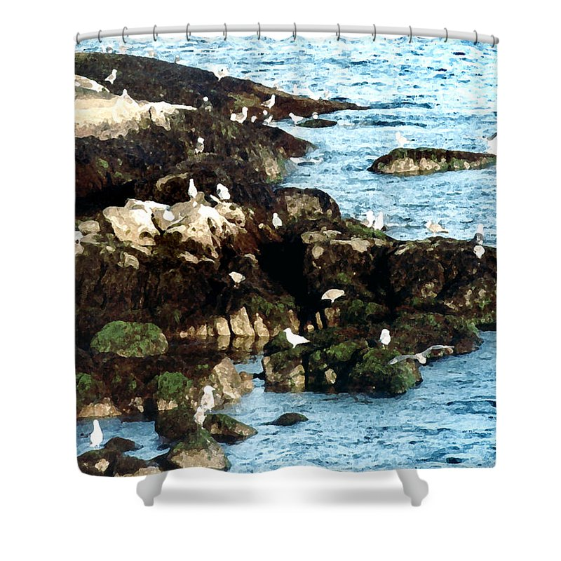 Seagulls Shower Curtain featuring the painting Gulls On Rocks by Paul Sachtleben