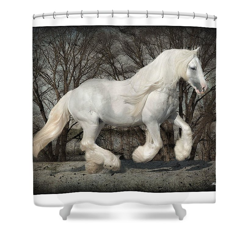 Gypsy Shower Curtain featuring the photograph Gypsy Forest by Fran J Scott