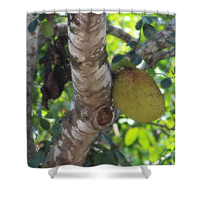 Jack Frute Shower Curtain featuring the photograph Hanging Rock by Manoj John