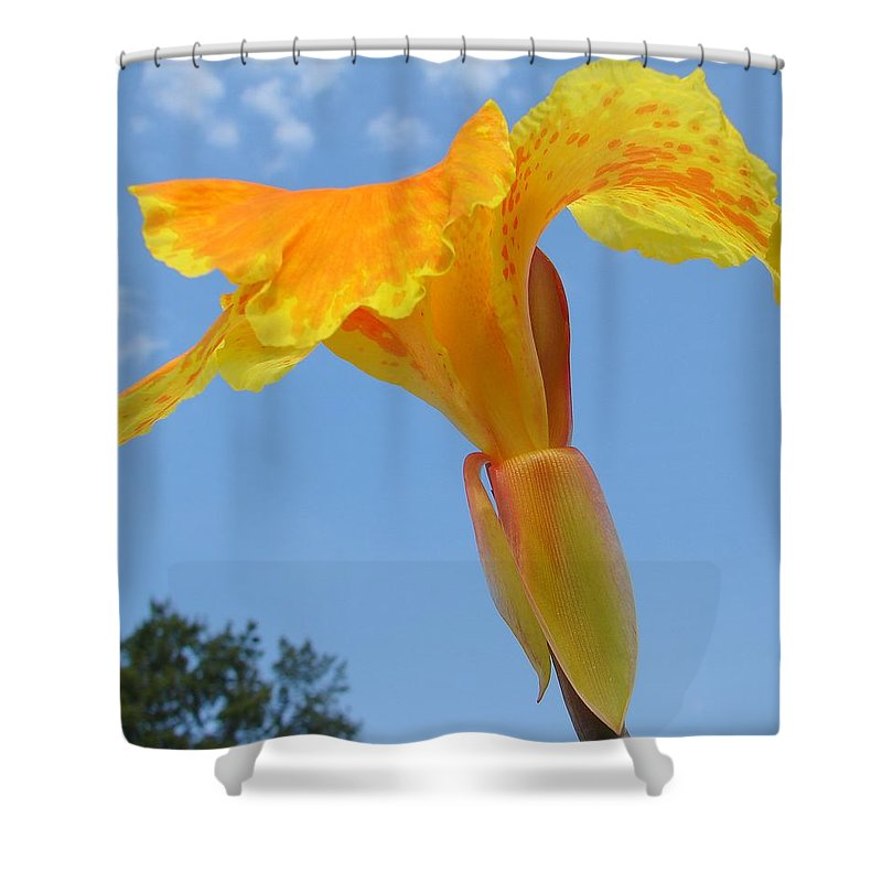 Shower Curtain featuring the photograph Happy Canna by Luciana Seymour