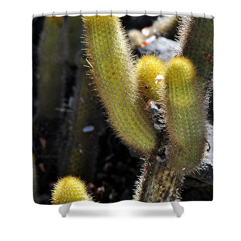 Clay Shower Curtain featuring the photograph Happy by Clayton Bruster