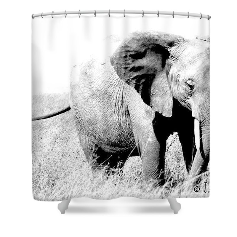 Elephant Shower Curtain featuring the photograph Happy Ellie by Judith Rosink