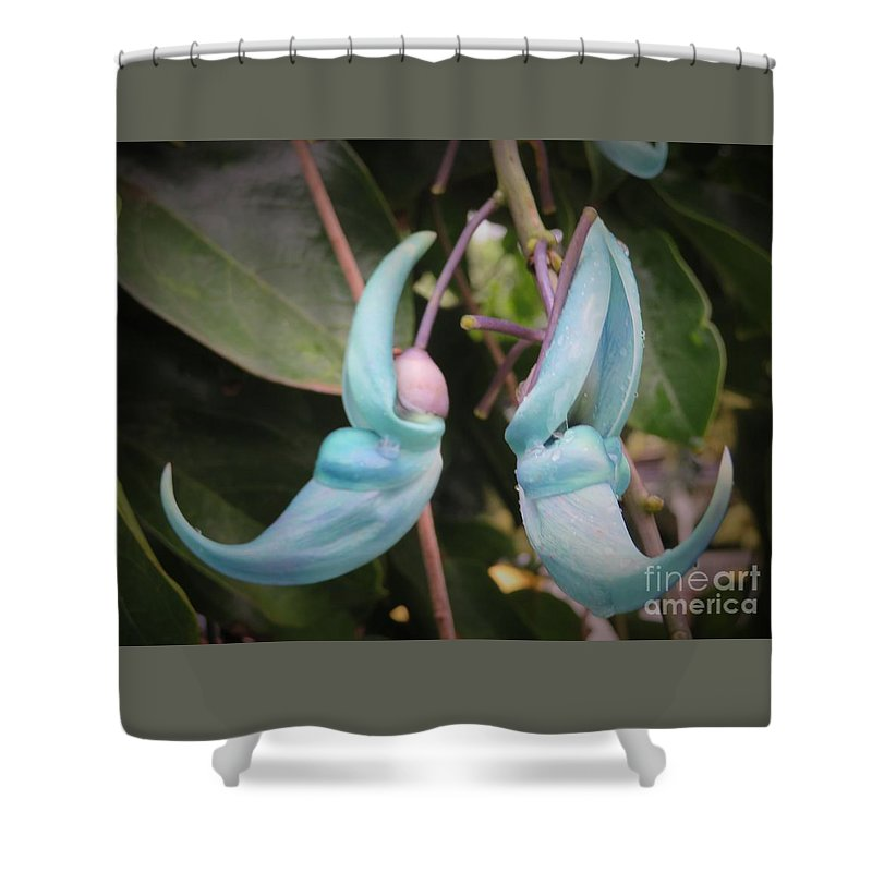 Flowers Shower Curtain featuring the photograph Happy Swinging by Nili Tochner