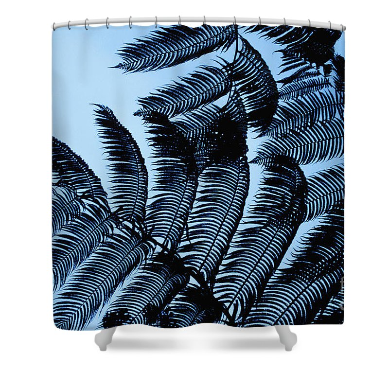 Beautiful Shower Curtain featuring the photograph Hapuu Silhouettes by William Waterfall - Printscapes