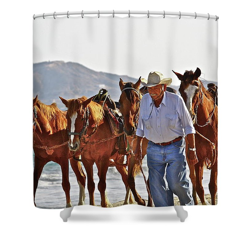 Animals Shower Curtain featuring the photograph Hardworking Man by Diana Hatcher