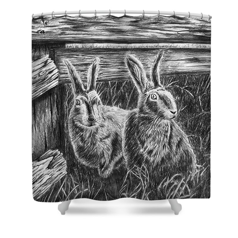 Hare Line Shower Curtain featuring the drawing Hare Line by Peter Piatt
