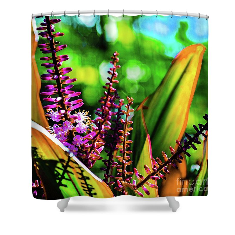 Ti Shower Curtain featuring the photograph Hawaii Ti Leaf Plant And Flowers by D Davila
