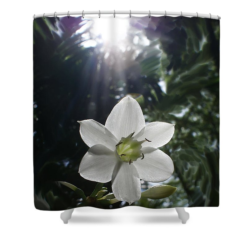 Hawaiian Shower Curtain featuring the photograph Hawaiian Flower by Heather Coen