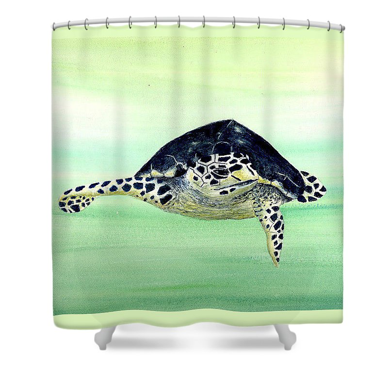 Turtle Shower Curtain featuring the painting Hawksbill Sea Turtle by Michael Vigliotti