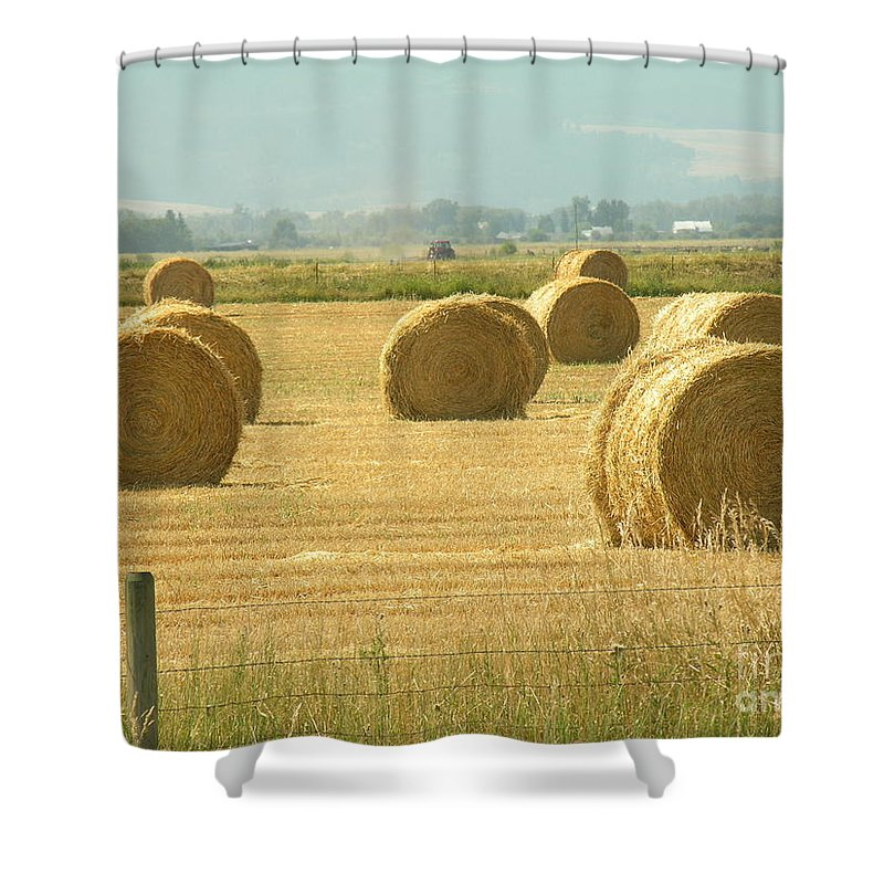 Hay Shower Curtain featuring the photograph Hay Bails by Diane Greco-Lesser