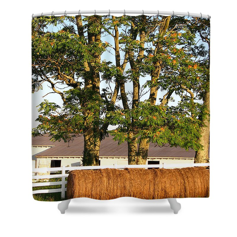 Landscape Shower Curtain featuring the photograph Hay Bales And Trees by Todd Blanchard