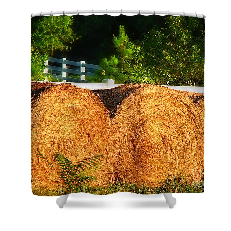 Landscape Shower Curtain featuring the photograph Hay Bales by Todd Blanchard