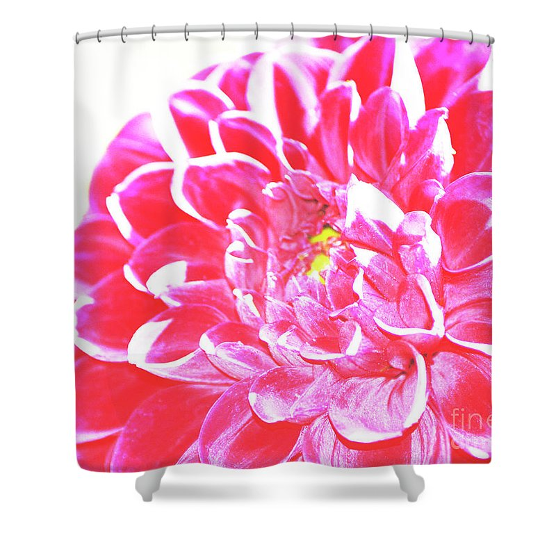 Heat Shower Curtain featuring the photograph Heat by Traci Cottingham