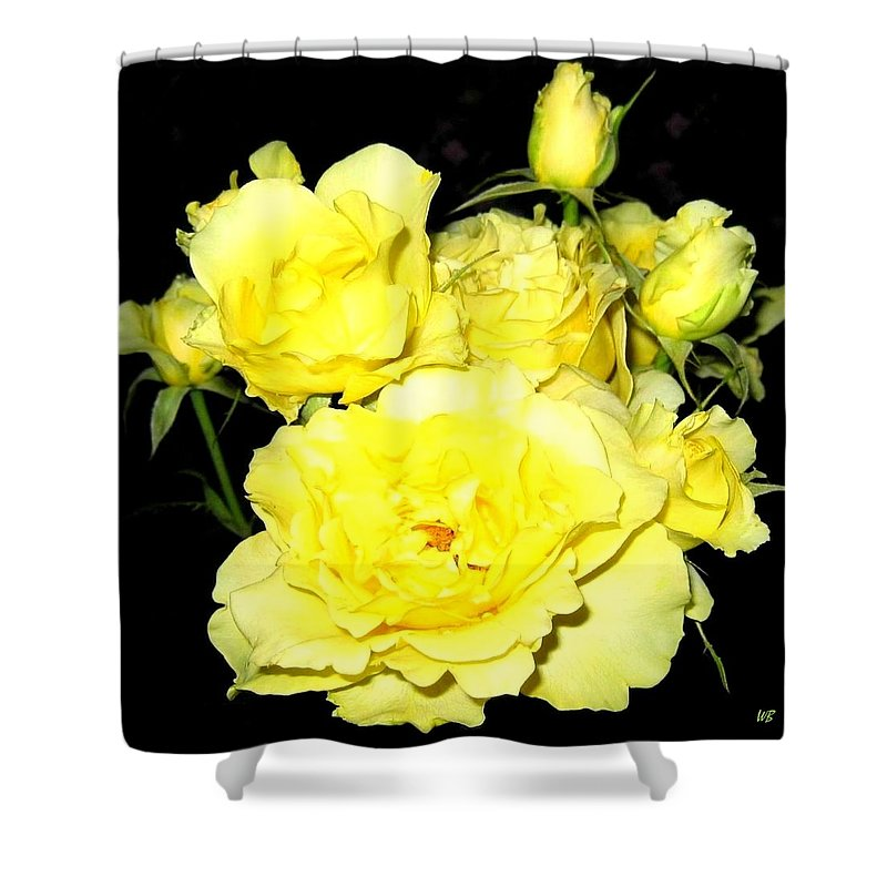 Roses Shower Curtain featuring the photograph Heaven Scent by Will Borden