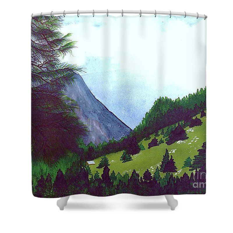 Original Painting Shower Curtain featuring the painting Heidi's Place by Patricia Griffin Brett