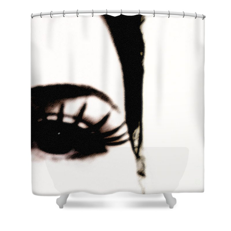Eye Shower Curtain featuring the photograph Hello by Amanda Barcon