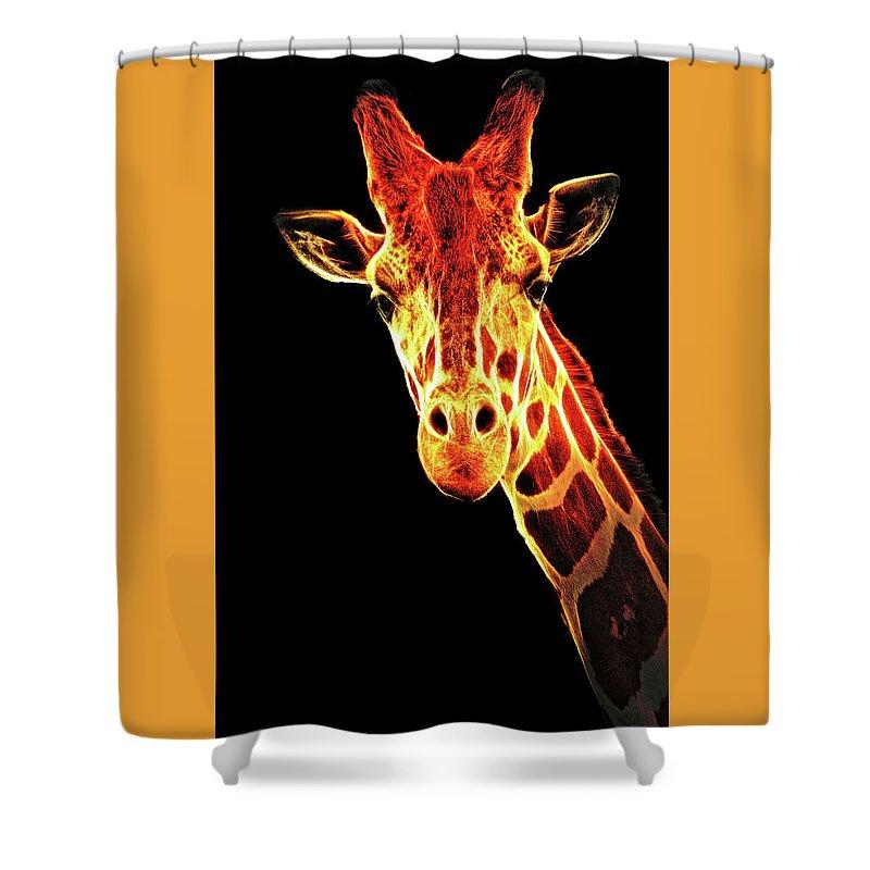 A Portrait Of A Giraffe Shower Curtain featuring the photograph Hello Giraffe by Elaine Walsh