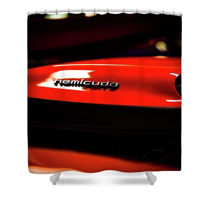 Auto Shower Curtain featuring the photograph Hemicuda by Van Sutherland