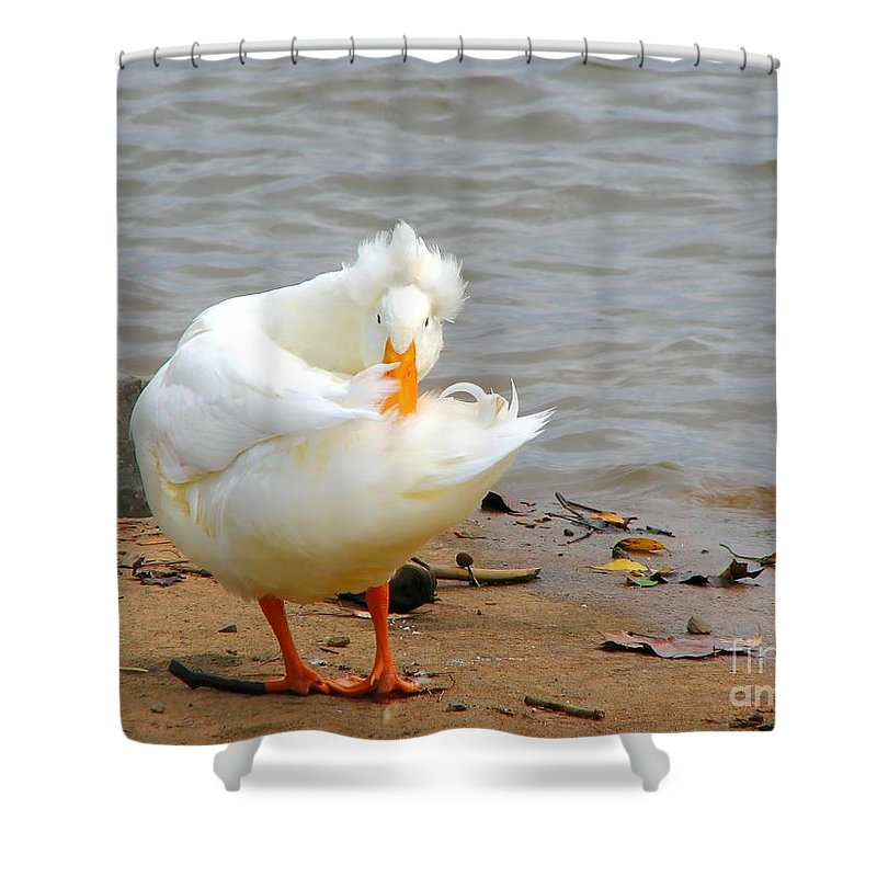 Duck Shower Curtain featuring the photograph Here's Looking At You by Todd Blanchard
