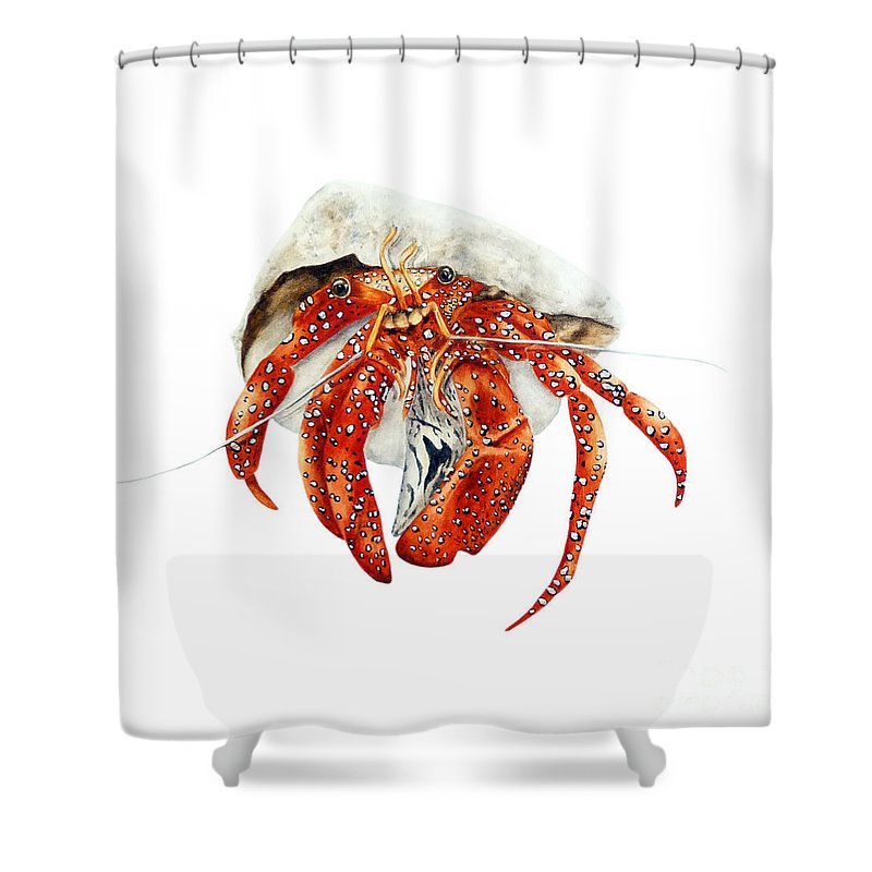 Crab Shower Curtain Featuring The Painting Hermit By Marie Burke