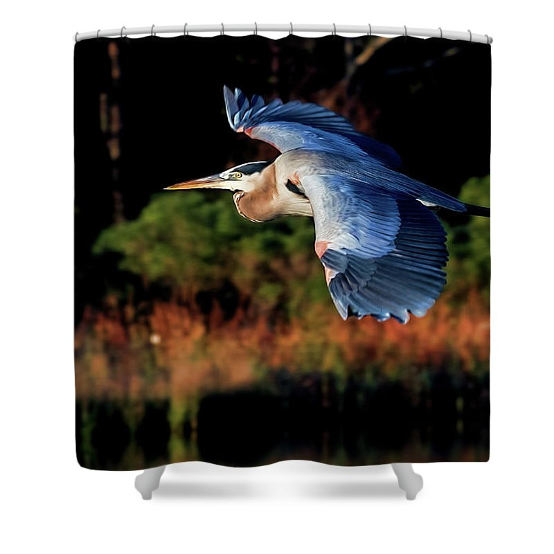 Heron Shower Curtain featuring the photograph Heron by Jacalyn Ackerman