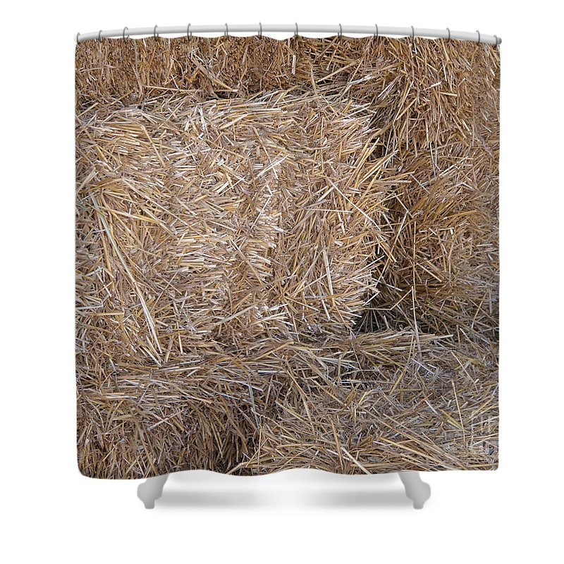 Hay Shower Curtain featuring the photograph Hey There by Ann Horn