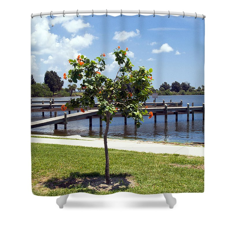 Hibiscus; Rosasinensis; Rosa; Sinensis; Rosa-sinensis; Tree; Bush; Shrub; Plant; Flower; Flowers; Fl Shower Curtain featuring the photograph Hibiscus Rosasinensis With Fruit On The Indian River In Florida by Allan Hughes