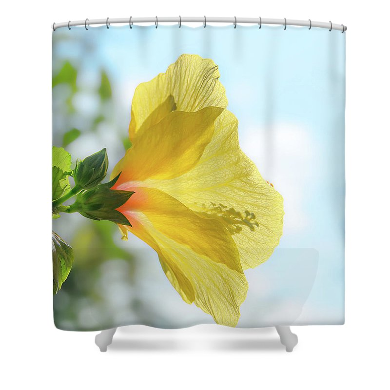David Lawson Photography Shower Curtain featuring the photograph Hibiscus Sunshine by David Lawson
