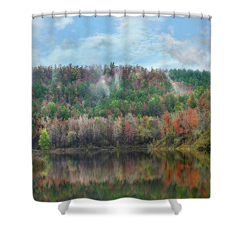 Forest Shower Curtain featuring the photograph Hickory Forest by Tim Fitzharris