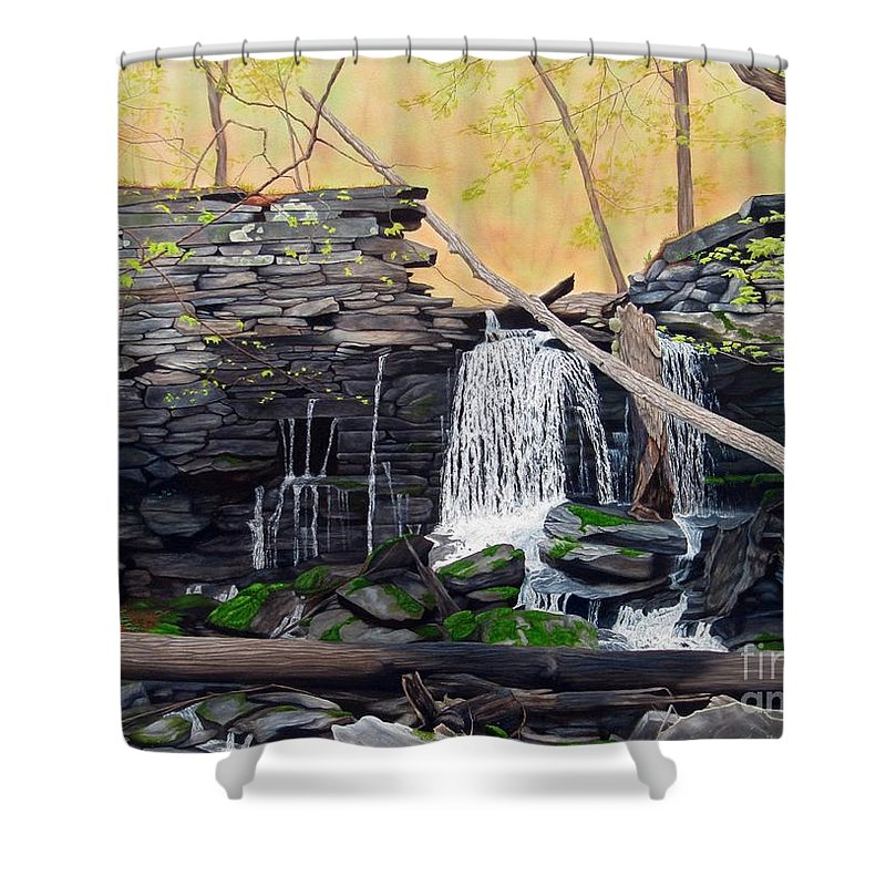Waterfall Shower Curtain featuring the painting Hidden Sanctuary by Heidi Parmelee-Pratt