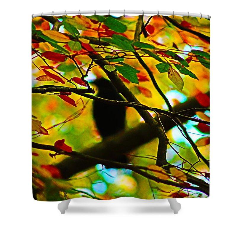 Landscape Shower Curtain featuring the photograph Hidden Delight by Loretta S
