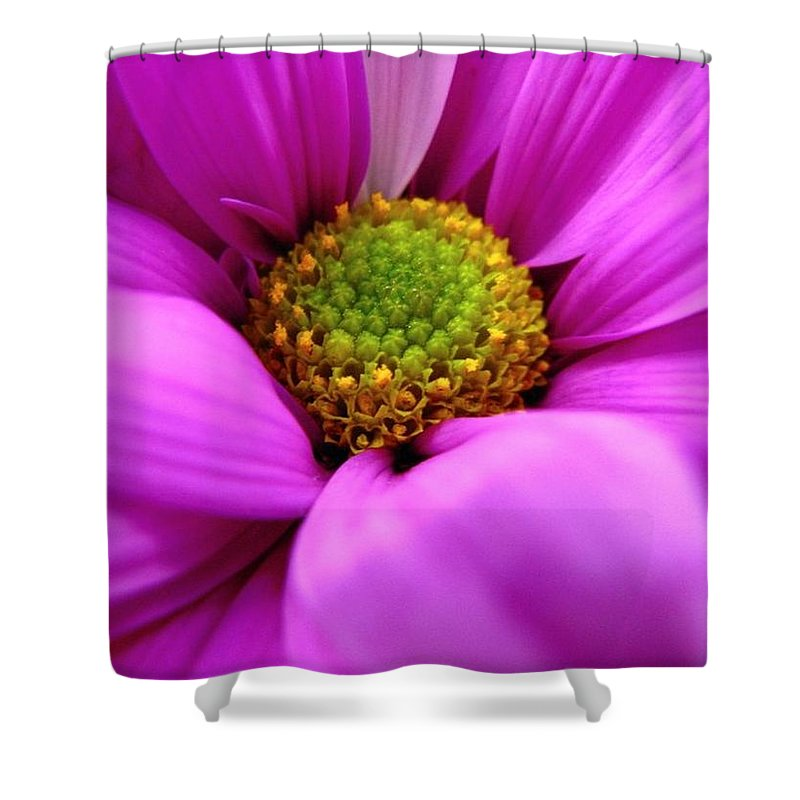 Flower Shower Curtain featuring the photograph Hidden Inside by Rhonda Barrett