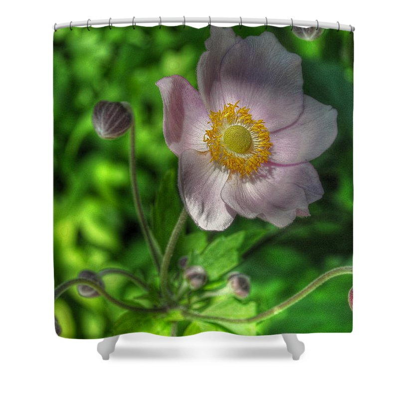 Cranbrook Shower Curtain featuring the photograph Hidden Treasures by Chris Fleming