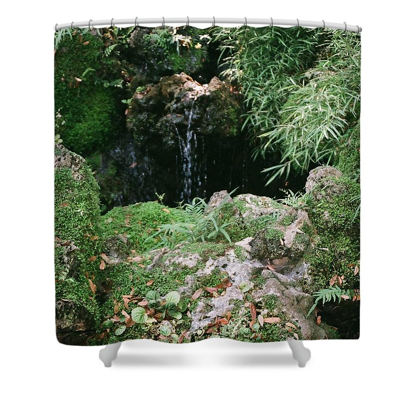 Nature Shower Curtain featuring the photograph Hidden Waterfall by Dean Triolo
