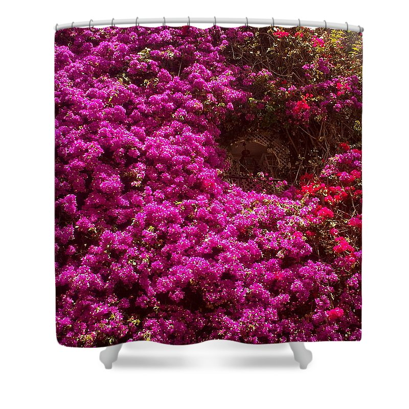 Bougainvillea Shower Curtain featuring the photograph Hidden Window by Valerie Ornstein