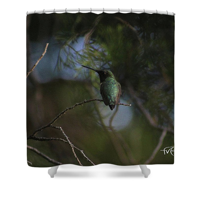 Outdoor Images Shower Curtain featuring the photograph Hiding Hummer by Felipe Gomez