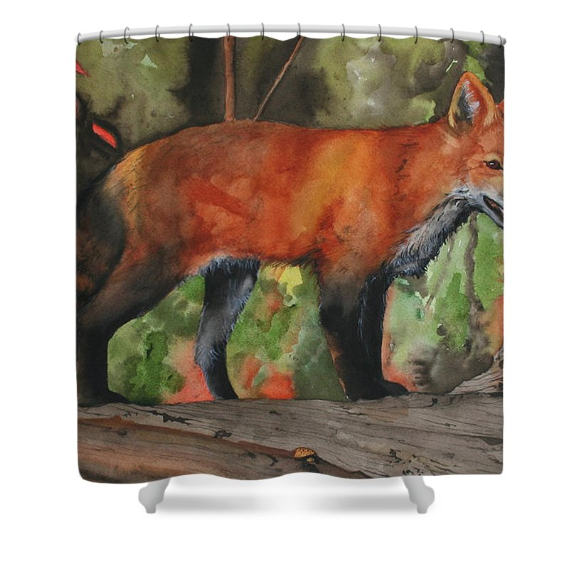 Fox Shower Curtain featuring the painting Hiding In Plain Sight by Jean Blackmer