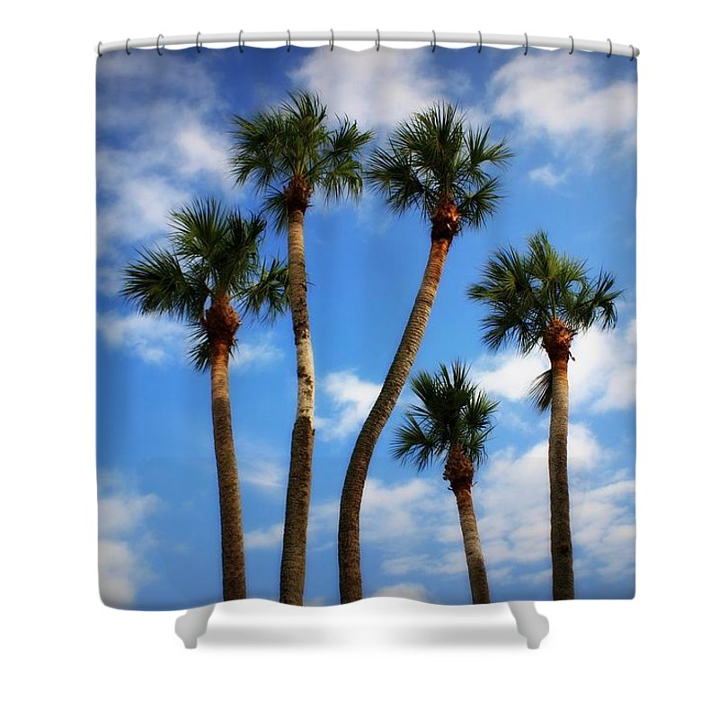 Palm Trees Shower Curtain featuring the photograph High Five by Mandy Shupp