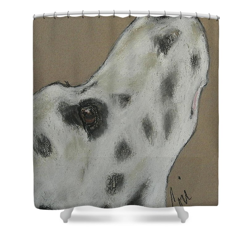 Dalmatian Shower Curtain featuring the drawing Highly Motivated by Cori Solomon