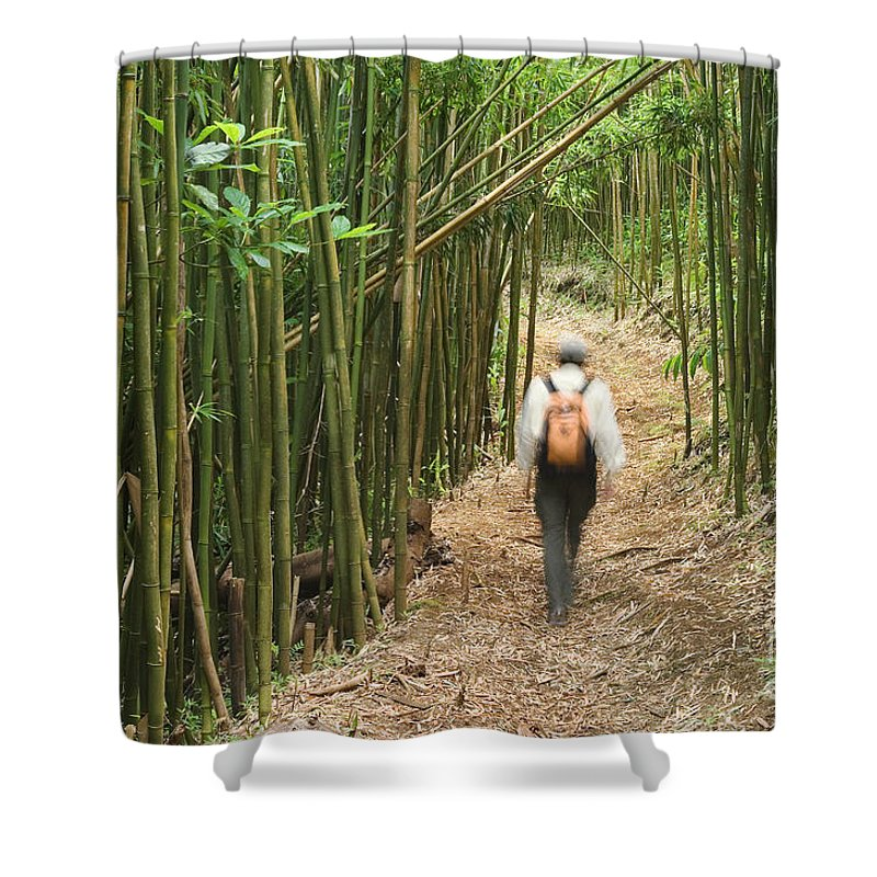 Adventure Shower Curtain featuring the photograph Hiker In Bamboo Forest by Greg Vaughn - Printscapes