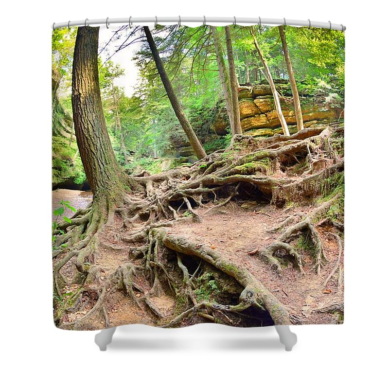 Hocking Hills Ohio Old Man's Gorge Trail Shower Curtain featuring the photograph Hocking Hills Ohio Old Man's Gorge Trail by Lisa Wooten
