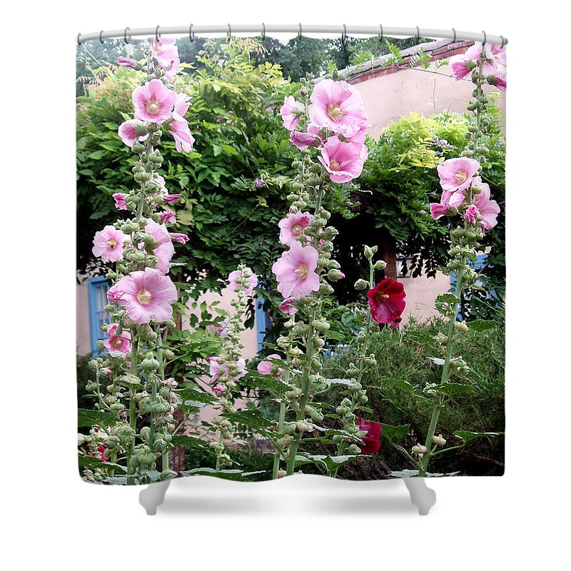 Flowers Shower Curtain featuring the photograph Hollyhocks Taos New Mexico by Wayne Potrafka