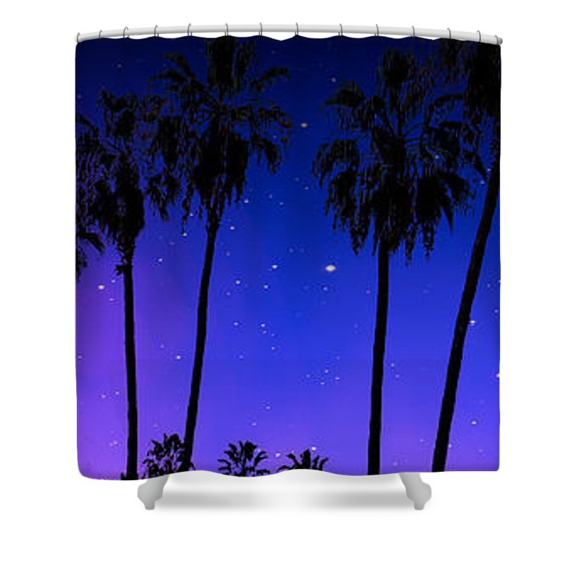 Iphone Cover Shower Curtain featuring the photograph Hollywood Palm Tree Abstract by Ralph King
