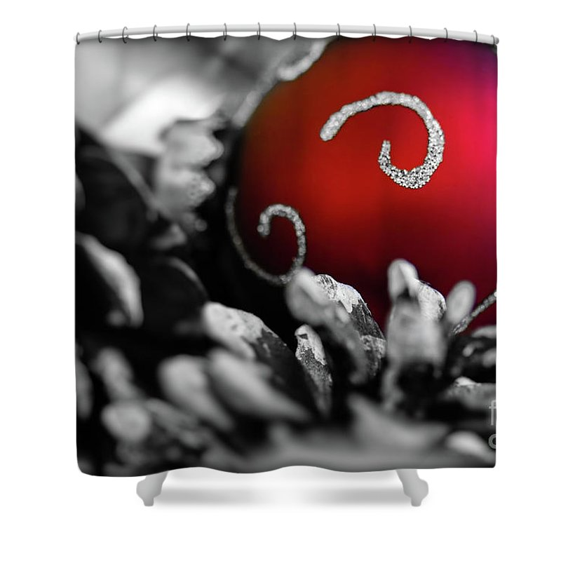 Holidays Shower Curtain featuring the photograph Home For The Holidays by Doug Sturgess