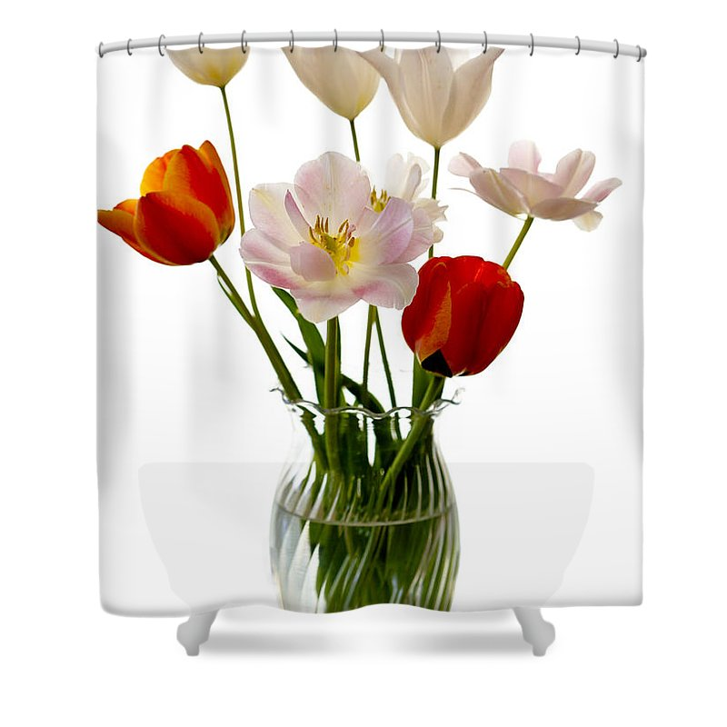 Flower Shower Curtain featuring the photograph Home Grown by Marilyn Hunt