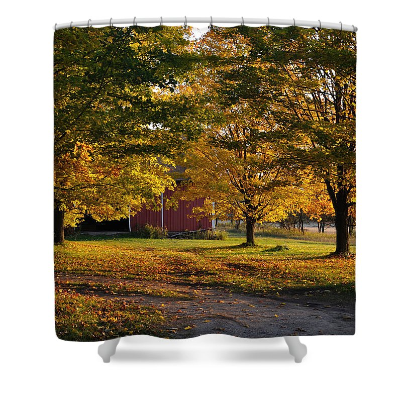Fall Shower Curtain featuring the photograph Homecoming by Tim Nyberg