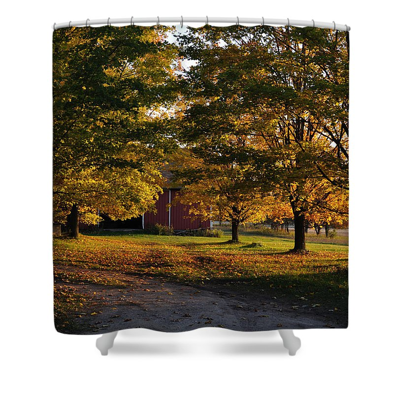 Fall Shower Curtain featuring the photograph Homecoming Two by Tim Nyberg