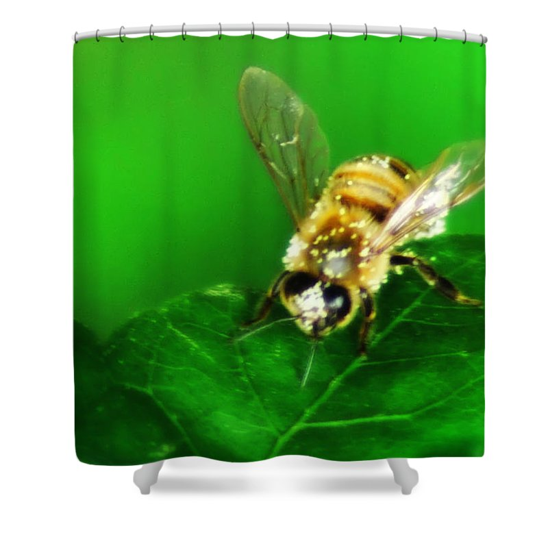Honey Shower Curtain featuring the photograph Honey Bee by Bill Cannon